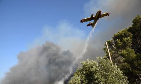Φωτιά στην Αχαϊα: Ολονύχτια μάχη με τις φλόγες
