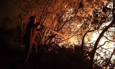 Πυροσβέστης δίνει μάχη με τις φλόγες στην Τουρκία