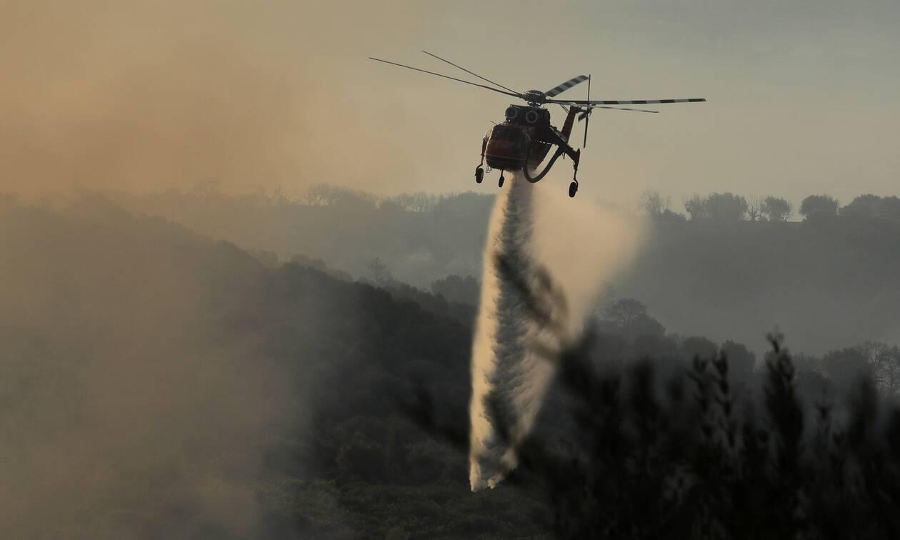 ΓΓΠΠ: Πολύ υψηλός κίνδυνος πυρκαγιάς για τη Δευτέρα (2/8)