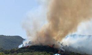 Φωτιά ΤΩΡΑ στην Αιτωλοακαρνανία: Εκκενώνονται προληπτικά οι οικισμοί Παραδείσι και Πεπάτη