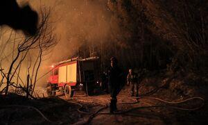 Ρεπορτάζ Newsbomb.gr - Φωτιά τώρα: Σε πύρινο κλοιό η Ελλάδα από Έβρο μέχρι Ρόδο