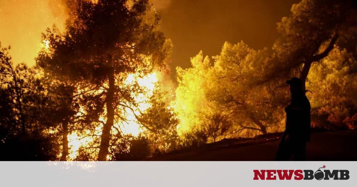Χαρδαλιάς: Είχαμε 116 φωτιές μέσα σε δύο ημέρες – Η Ρόδος, ο Έβρος μας απασχολούν – Newsbomb – Ειδησεις