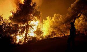 Φωτιά στη Ρόδο: Ολονύχτια «μάχη» με τις φλόγες, εκκενώθηκαν χωριά – Μπλακ άουτ στο νησί