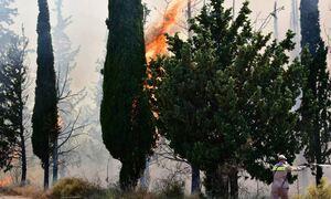«Καμπανάκι» - Ζερεφού: Kίνδυνος για πολύ μεγάλες φωτιές μετά τον καύσωνα - Επικίνδυνος ο Αύγουστος