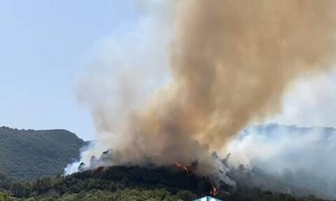 Φωτιά στο Αγρίνιο: Σε ύφεση η πυρκαγιά στο Παραδείσι - Επιστρέφουν στα σπίτια τους οι κάτοικο