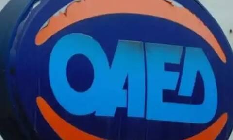 ΟΑΕΔ: Μέχρι 4/8 οι αιτήσεις για τις θέσεις σε βρεφονηπιακούς σταθμούς