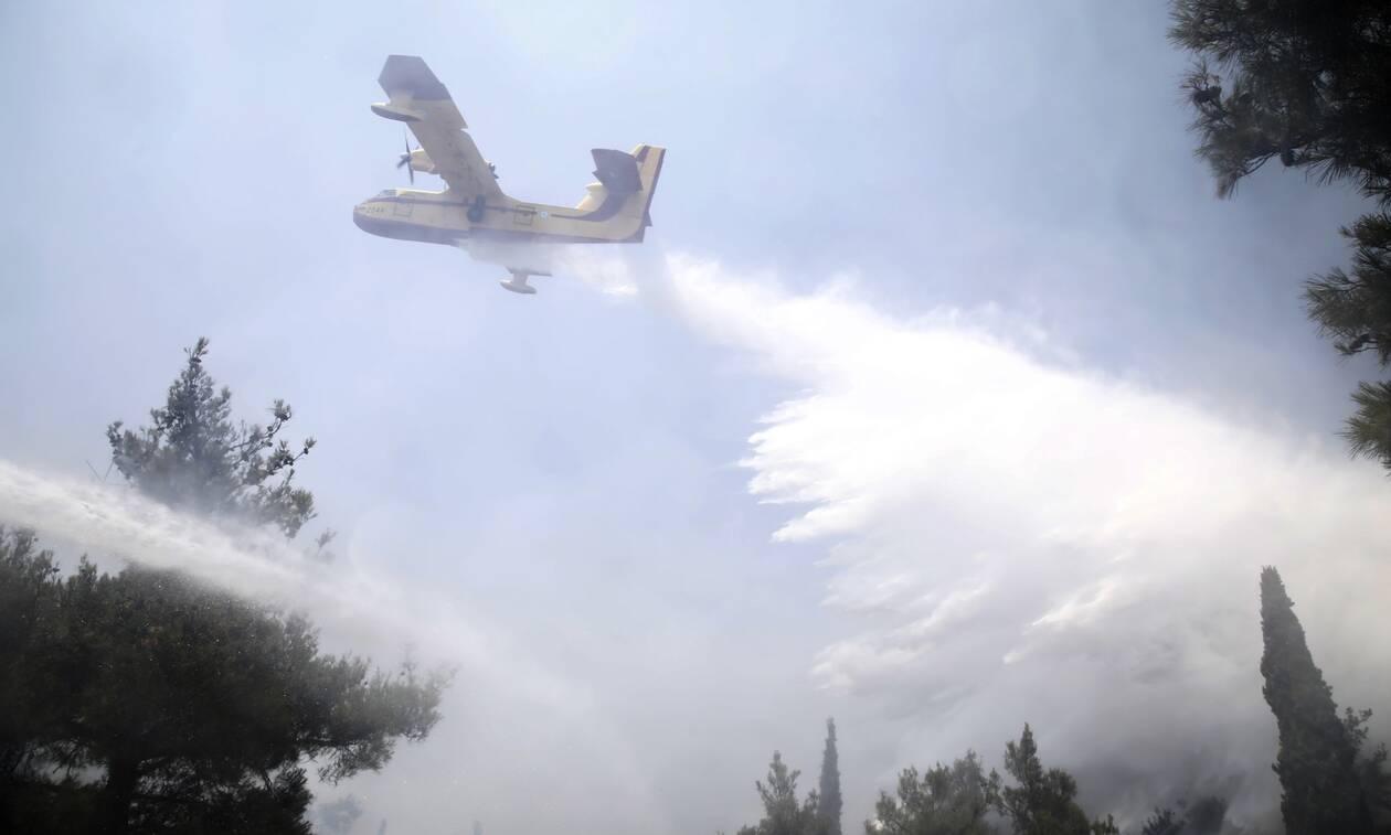 Καύσωνας: Ποιες περιοχές διατρέχουν πολύ υψηλό κίνδυνο πυρκαγιάς