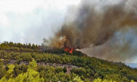 Προσοχή! Πολύ υψηλός κίνδυνος πυρκαγιάς την Τρίτη (3/8) σε δώδεκα Περιφέρειες