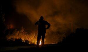 Φωτιά ΤΩΡΑ: Δύσκολη νύχτα στη Φθιώτιδα - Ανεξέλεγκτη η πυρκαγιά στο Λογγίτσι