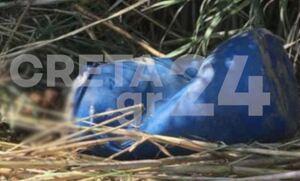 Θρίλερ με το πτώμα στο βαρέλι στην Κρήτη: Απίστευτη τροπή στην υπόθεση