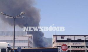Φωτιά στη Βαρυμπόμπη (photos)