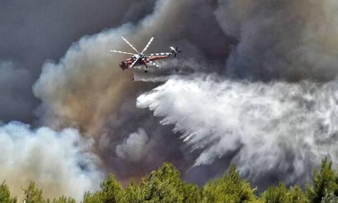 Φωτιά: Ακραίος κίνδυνος πυρκαγιάς για την Τετάρτη - Έκκληση Χαρδαλιά