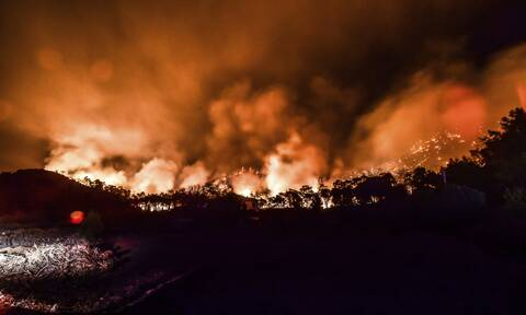 Τουρκία: Η φωτιά πλησιάζει επικίνδυνα τον ηλεκτρικό σταθμό του Μίλας