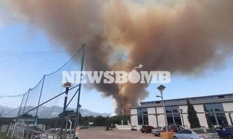 Πέτσας στο Newsbomb.gr για τη φωτιά στη Βαρυμπόμπη: Συντονισμένη επιχείρηση για τον περιορισμό της