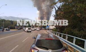 Φωτιά στη Βαρυμπόμπη: Έκλεισε η Εθνική Οδός - Αποκομμένη η Αθήνα από τη Λυκόβρυση
