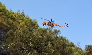 Φωτιά ΤΩΡΑ: Μεγάλη πυρκαγιά στην Κω – Απειλείται οικισμός