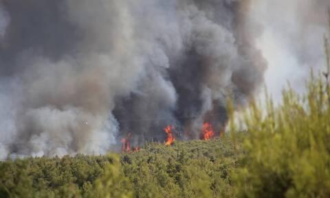 Φωτιά στην Βαρυμπόμπη: Εκκενώνεται ο οικισμός Αδάμες – Πέρασε στη Βαρυμπόμπη η πυρκαγιά