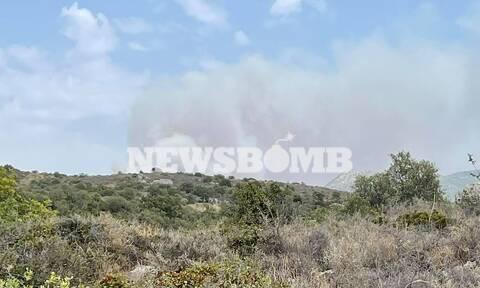 Αναζωπύρωση της φωτιάς στη Μεσσηνία: Εντολή για εκκένωση σε Βασιλίτσι, Λειβαδάκια, Άγιο Γεώργιο