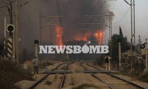 Φωτιά στη Βαρυμπόμπη: Μπήκε στις Αδάμες η πυρκαγιά - Στις αυλές των σπιτιών οι φλόγες