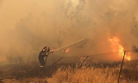 Συγκλονιστική μάχη των πυροσβεστών στη φωτιά της Βαρυμπόμπης