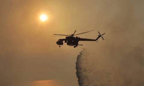 Φωτιά ΤΩΡΑ: Σε πύρινο κλοιό Μάνη, Μεσσηνία και Εύβοια - Μάχη με τις αναζωπυρώσεις