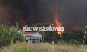 Φωτιά στη Βαρυμπόμπη: Νέο μήνυμα από το 112 για εκκένωση και του Ολυμπιακού Χωριού