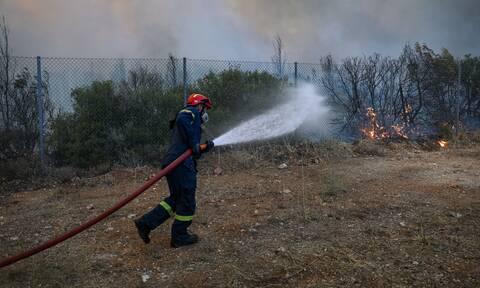 Φωτιά στα Καλάβρυτα: Καίγεται δάσος ανάμεσα στα χωριά Πλάκα και Αγράμπελα