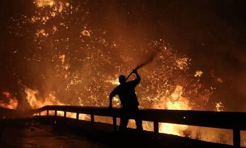 Φωτιά στη Λακωνία: Σε εξέλιξη η πυρκαγιά στην περιοχή Καστάνια