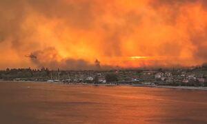 Φωτιά στην Εύβοια: Εικόνες Αποκάλυψης - Οι φλόγες σταμάτησαν στη θάλασσα - Ασύλληπτη καταστροφή