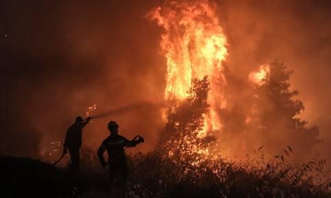 Φωτιά ΤΩΡΑ: Δεν υπάρχει ενεργό μέτωπο στη Ρόδο - Έχει περιοριστεί η πυρκαγιά στην Κω