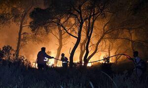 Φωτιά ΤΩΡΑ: Προληπτική απαγόρευση της κυκλοφορίας στις δασικές περιοχές πέντε νησιών