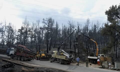 Φωτιά στη Βαρυμπόμπη: Καλύτερη η εικόνα στο δίκτυο ηλεκτροδότησης - Δύσκολη η σημερινή μέρα