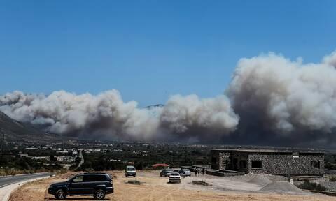 Φωτιές στην Πελοπόννησο: Στις φλόγες Λακωνία και Μεσσηνία - Μεγάλες καταστροφές