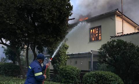Φωτιά στη Βαρυμπόμπη: Ανάλυση - Γιατί πήρε γιγαντιαίες διαστάσεις η πυρκαγιά