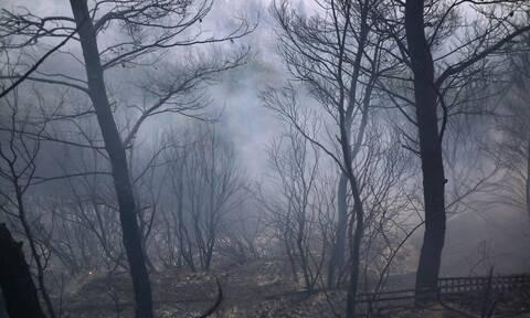 Μεγάλη καταστροφή άφησε πίσω της η φωτιά στη Βαρυμπόμπη
