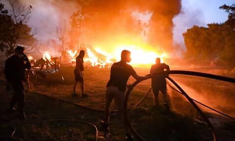 Φωτιά στην Βαρυμπόμπη: Πόση αυτοκαταστροφή να αντέξουμε;