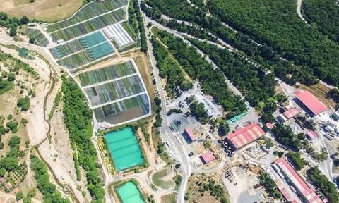 Το έργο της Ολυμπιάδας στα Μεταλλεία Κασσάνδρας στη ΒΑ Χαλκιδική