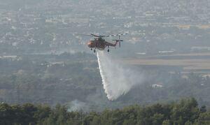 Φωτιά στη Βαρυμπόμπη: Έντονες αναζωπυρώσεις στις Αδάμες - Νέος συναγερμός στην Πυροσβεστική