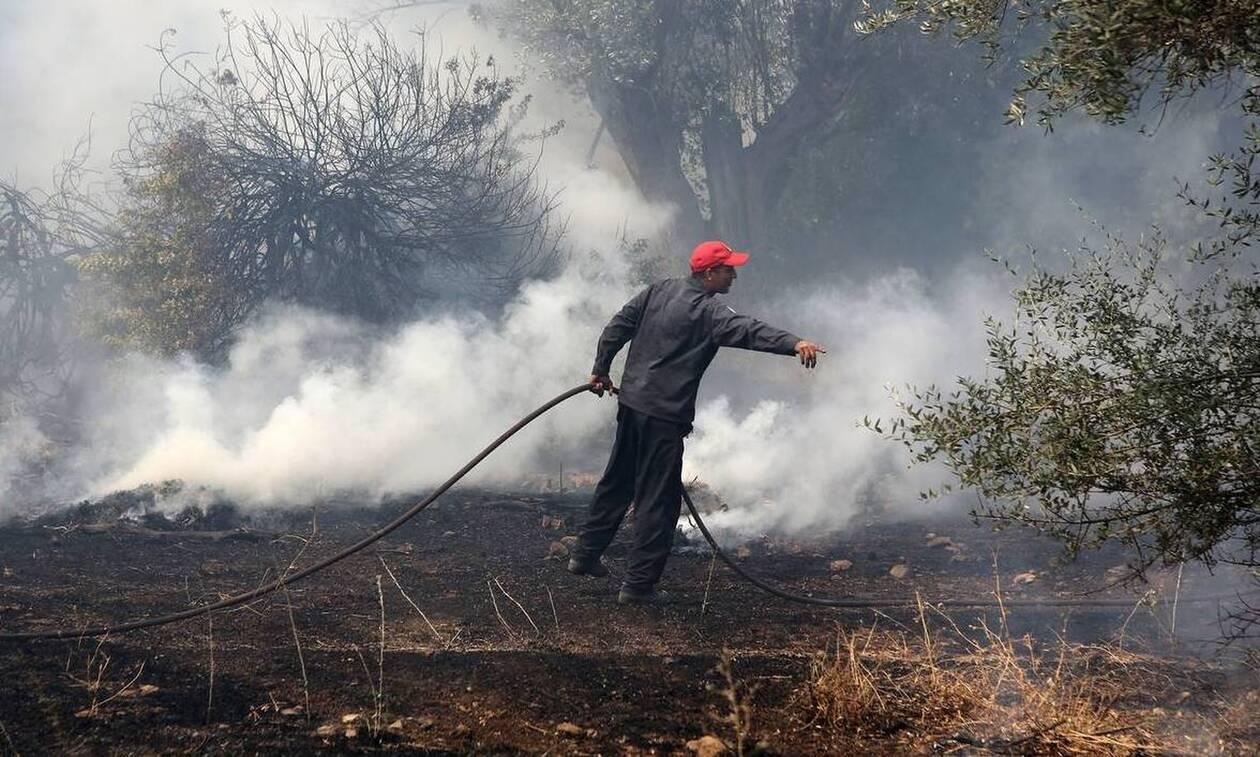 Φωτιά στην Ευβοία: Με εγκαύματα στο Κέντρο Υγείας Μαντουδίου τρεις πυροσβέστες