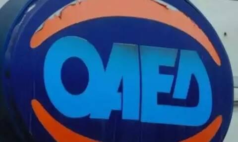 ΟΑΕΔ: Πότε λήγει η προθεσμία αιτήσεων του προγράμματος για 5.000 ανέργους