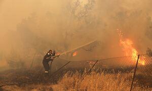 Τελικά πώς ξεκίνησε η φωτιά στη Βαρυμπόμπη;