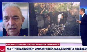 Λέκκας: «Πυριτιδαποθήκη» η Ελλάδα - Η θερμοκρασία έφτασε 600 βαθμούς Κελσίου στα καμένα