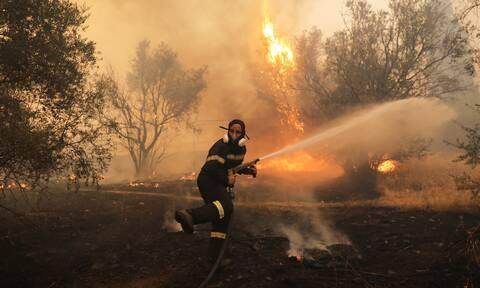 Φωτιά ΤΩΡΑ: Μεγάλη πυρκαγιά στο Μαρτίνο Φθιώτιδας