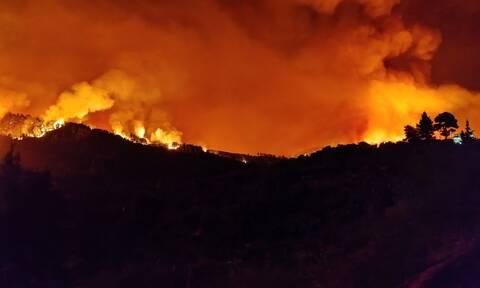 Φωτιά ΤΩΡΑ: Νέο μήνυμα από το 112 - «Εκκενώστε τώρα Παραπούγκι, Καρνάσι και Δεσύλλα Μεσσηνίας»