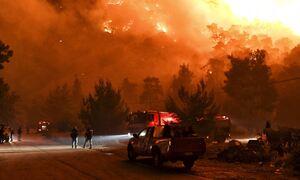 Φωτιά στην Ηλεία: Ολονύχτια η μάχη με τις φλόγες στην Αρχαία Ολυμπία