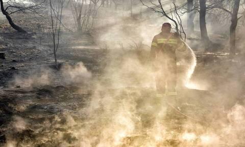 Φωτιές: Η αναλυτική ενημέρωση της Πυροσβεστικής για τα ενεργά μέτωπα
