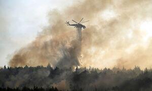 Φωτιές στην Ελλάδα: Αποπνικτική και σήμερα η ατμόσφαιρα - Πότε αναμένεται βελτίωση