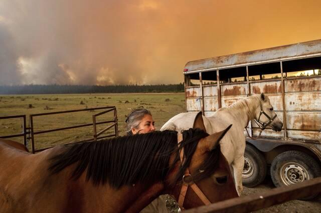 california fires 3 5 8