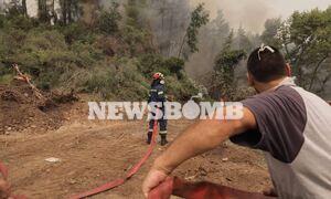 Φωτιά στην Εύβοια: Οι φλόγες πλησιάζουν τις Κεχριές - Απέχουν 100 μέτρα από το χωριό