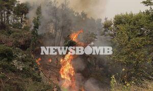 Φωτιά Εύβοια: Σε κατάσταση Έκτακτης Ανάγκης η Δημοτική Ενότητα Ελυμνίων